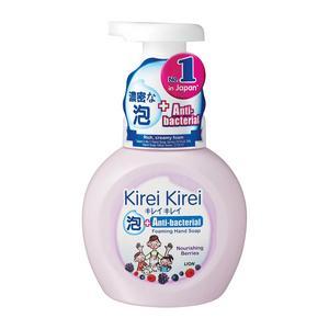 Anti-Bacterial Caring Berries Foaming Hand Soap
