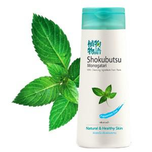 Anti-Bacterial Body Foam - Refreshing and Purifying