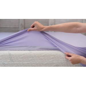 Bed Sheet - 3 Sizes